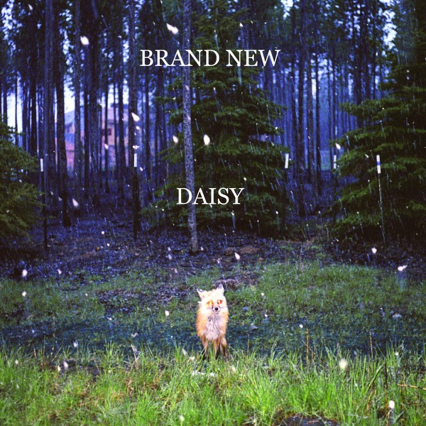 Daisy Album Artwork